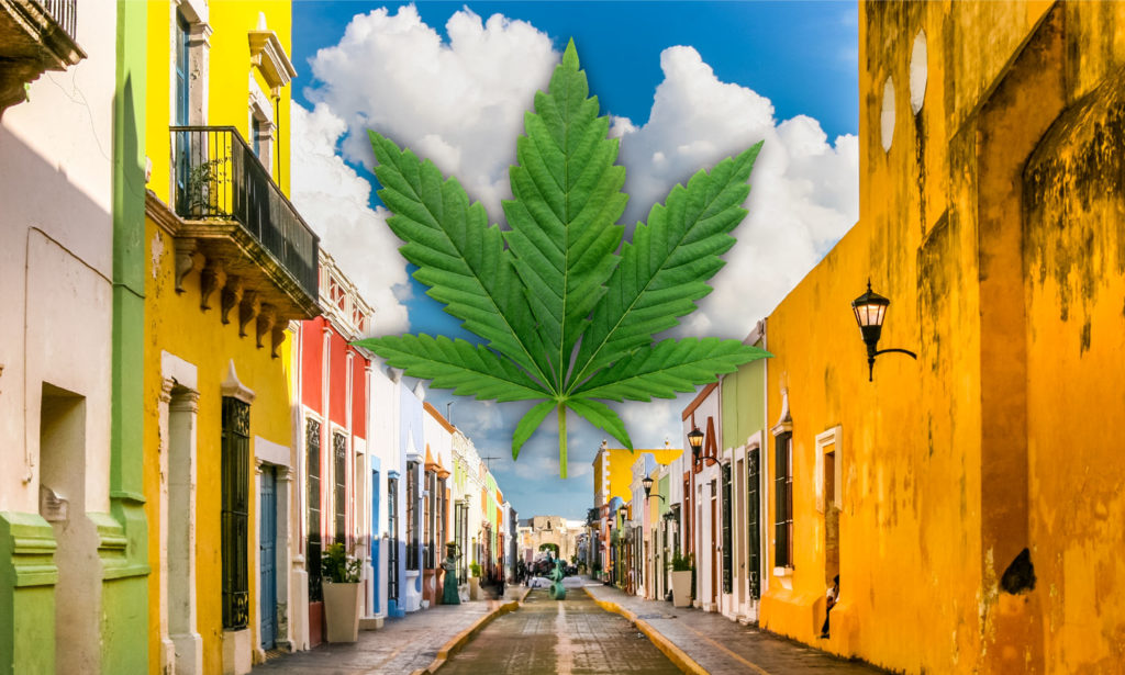 Mexico is Ready for Cannabis