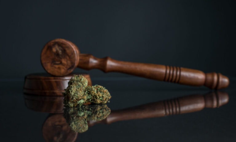 Legislative Process To End Cannabis Prohibition Begins!