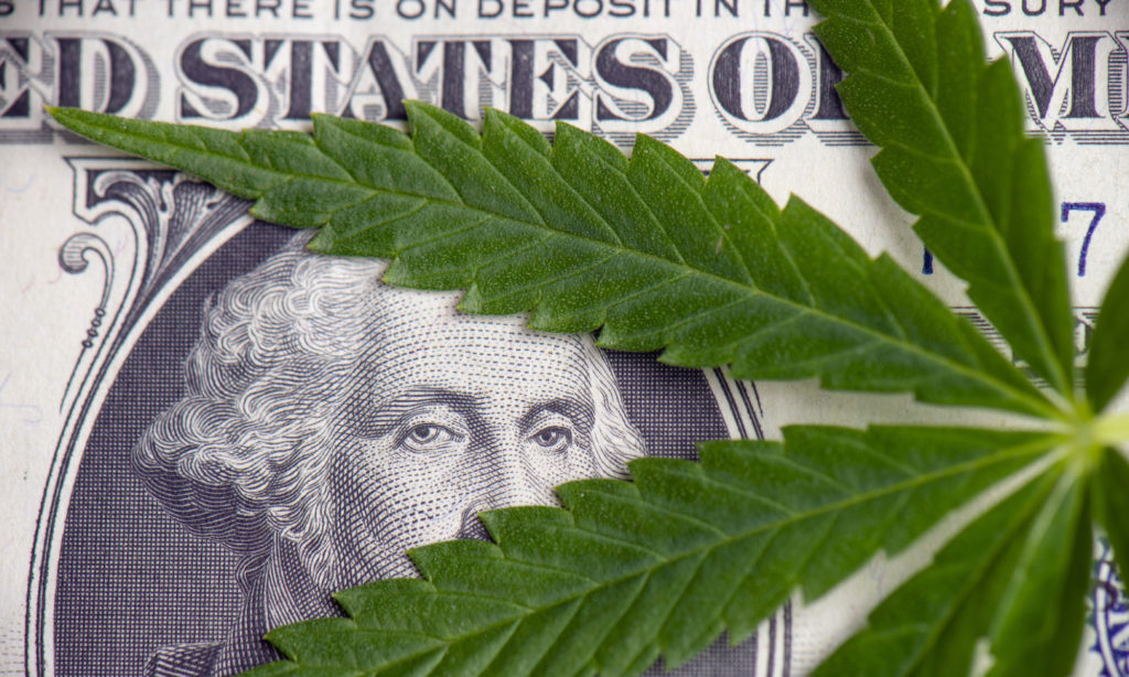 Is Now a Good Time to Invest In Cannabis?