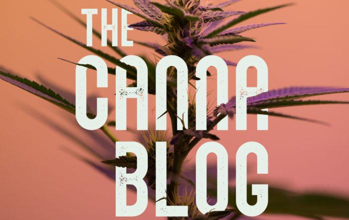The Canna-Blog